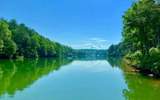 LT308 Thirteen Hundred, Blairsville, GA 30512 (MLS #299368) :: Path & Post Real Estate