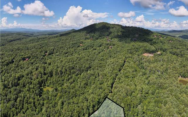 LOT 1 Rocking Chair Ridge, Mineral Bluff, GA 30559 (MLS #299392) :: RE/MAX Town & Country