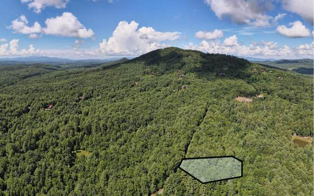 LOT 2 Rocking Chair Ridge, Mineral Bluff, GA 30559 (MLS #299393) :: RE/MAX Town & Country
