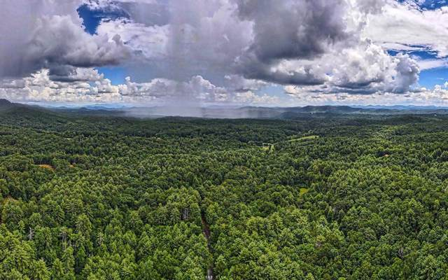 LOT 4 Rocking Chair Ridge, Mineral Bluff, GA 30559 (MLS #299395) :: RE/MAX Town & Country