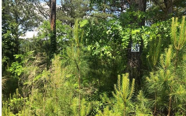 21 Pinehurst, Blairsville, GA 30512 (MLS #299444) :: Path & Post Real Estate