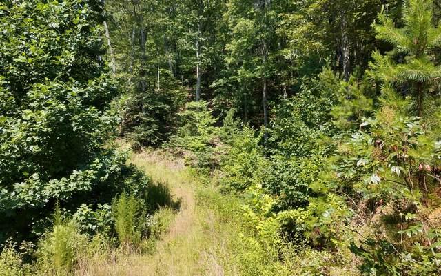 Mission Ridge, Hayesville, NC 28904 (MLS #299480) :: Path & Post Real Estate