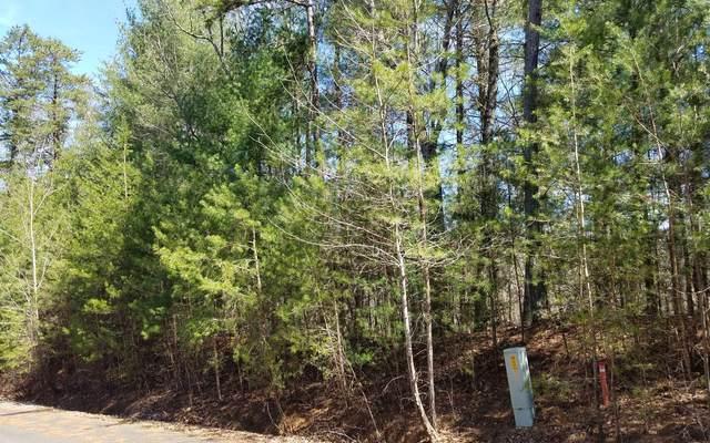 LT20 Bluffs At Cartecay, Ellijay, GA 30540 (MLS #299507) :: Path & Post Real Estate