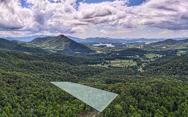 3016 Jump Off Ridge, Hiawassee, GA 30546 (MLS #299555) :: Path & Post Real Estate
