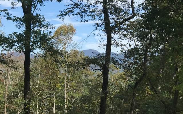 Lot 11 Self Mountain, Blairsville, GA 30512 (MLS #299562) :: Path & Post Real Estate