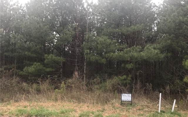 00 Foxpaw Leaf Lane, Ellijay, GA 30540 (MLS #299682) :: Path & Post Real Estate