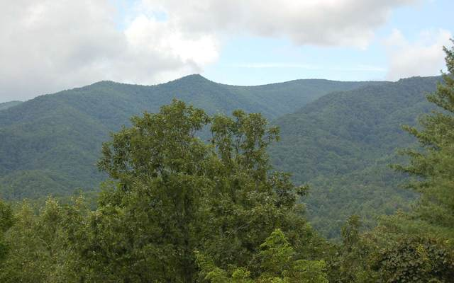 LOT 9 Chairmaker Drive, Hayesville, NC 28904 (MLS #299687) :: Path & Post Real Estate