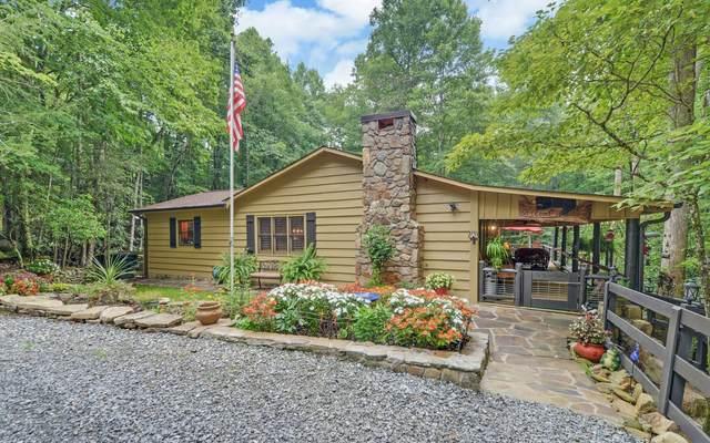 1091 Briar Cove Road, Morganton, GA 30560 (MLS #299697) :: Path & Post Real Estate