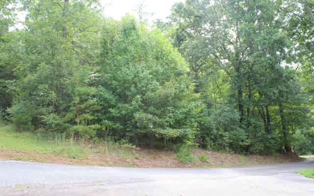 LT 12 Downings Place, Hayesville, NC 28904 (MLS #299705) :: Path & Post Real Estate