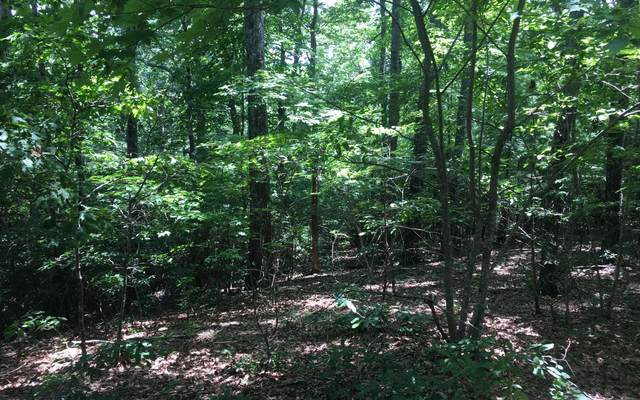 Cedar Mountain View, Blairsville, GA 30512 (MLS #299707) :: Path & Post Real Estate