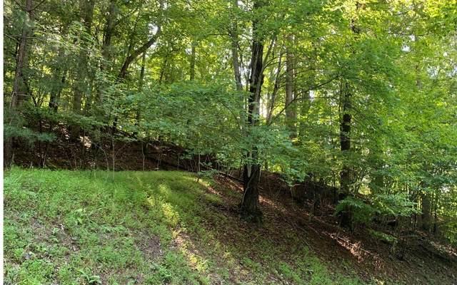 8 B Spring Lake Drive, Blairsville, GA 30512 (MLS #299746) :: Path & Post Real Estate