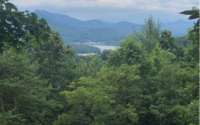 Chatuge Woods, Hayesville, NC 28904 (MLS #299761) :: RE/MAX Town & Country