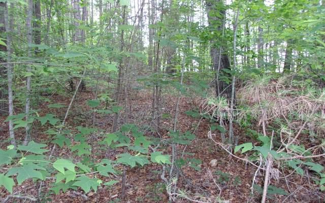TRT 1 Spiva Cove Mnt Rd, Blairsville, GA 30512 (MLS #299818) :: Path & Post Real Estate