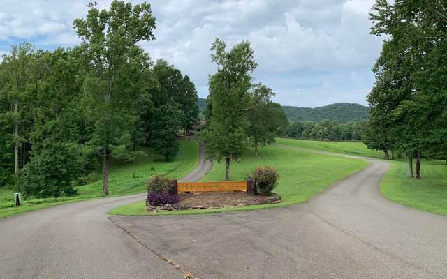 162 Trailwood Drive, Ellijay, GA 30536 (MLS #299886) :: Path & Post Real Estate