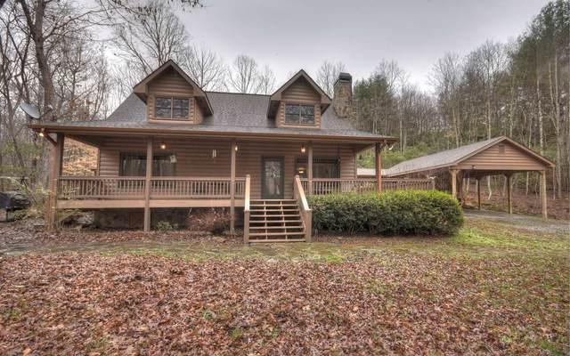 113 Deer Springs Rd, Morganton, GA 30560 (MLS #299918) :: RE/MAX Town & Country
