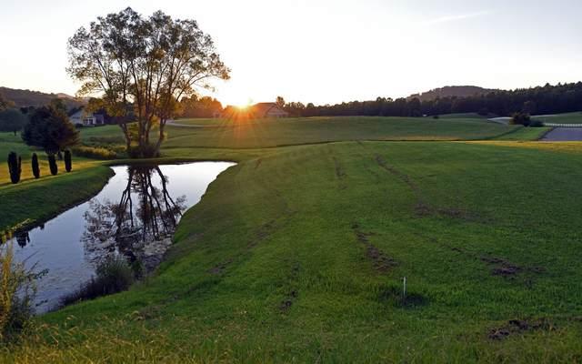 LOT 5 Trackrock Valley Far, Blairsville, GA 30512 (MLS #299934) :: Path & Post Real Estate