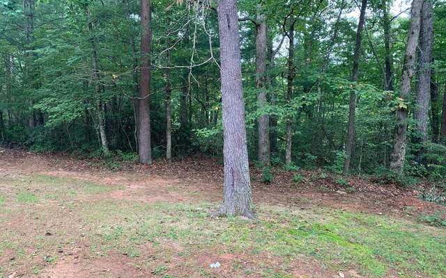LT 13 Bitter Creek, Blairsville, GA 30512 (MLS #299992) :: Path & Post Real Estate