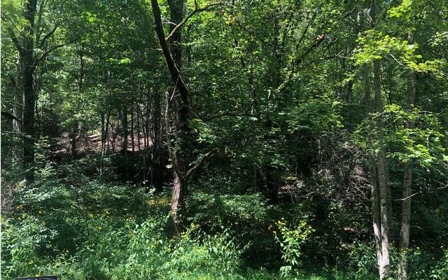 8A River Cove Sub, Hayesville, NC 28904 (MLS #300042) :: Path & Post Real Estate