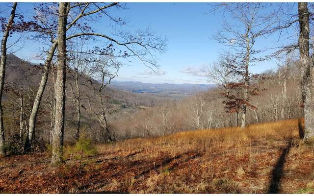 LT137 Shiloh Ridge, Hayesville, NC 28904 (MLS #300101) :: RE/MAX Town & Country