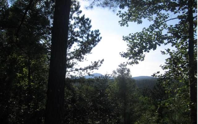 LT200 & LT201 THIRTEEN HUN, Blairsville, GA 30512 (MLS #300288) :: Path & Post Real Estate