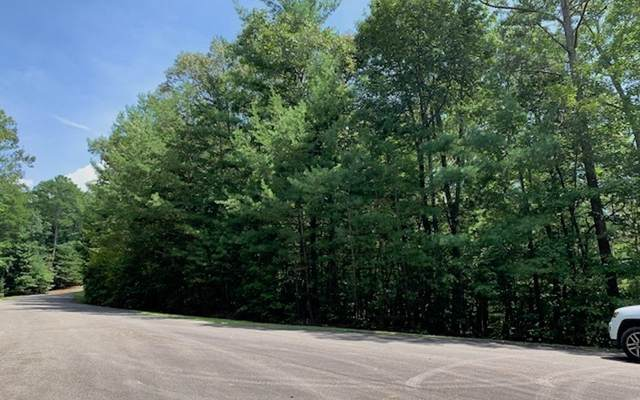 LT 10 Dover Highlands Tr, Ellijay, GA 30540 (MLS #300296) :: Path & Post Real Estate