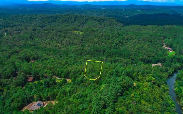 Lot #16 River Way, Blue Ridge, GA 30513 (MLS #300299) :: RE/MAX Town & Country