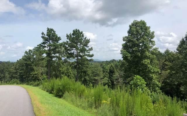 L 233 Thirteen Hundred, Blairsville, GA 30512 (MLS #300410) :: Path & Post Real Estate