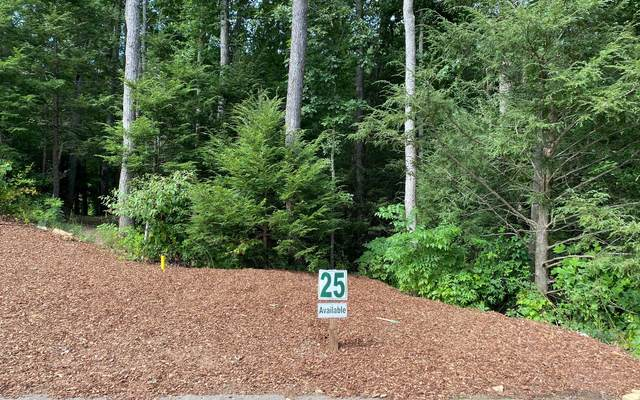 LT 25 Overlook At Br, Blue Ridge, GA 30513 (MLS #300472) :: Path & Post Real Estate