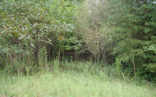 LOT 7 Penny Way Lot 7, Hayesville, NC 28904 (MLS #300580) :: RE/MAX Town & Country