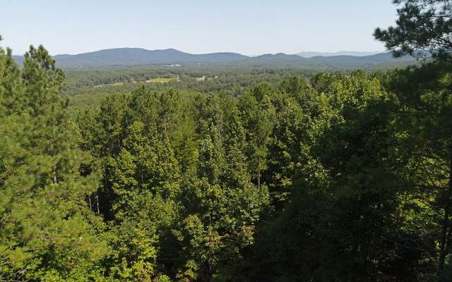 LT 28 Loftis Mtn Road, Blairsville, GA 30512 (MLS #300601) :: Path & Post Real Estate