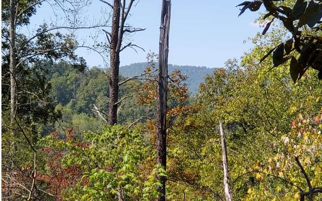 5 Blue Ridge Heights, Hayesville, NC 28904 (MLS #300603) :: Path & Post Real Estate