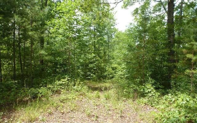 00 Daylily Drive, Murphy, NC 28906 (MLS #300604) :: Path & Post Real Estate