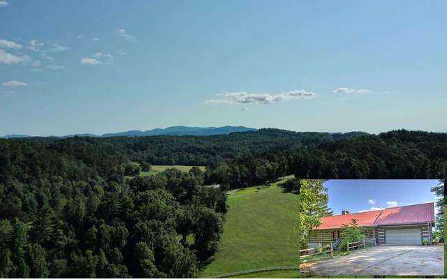 215 The Bluff, Morganton, GA 30560 (MLS #300669) :: Path & Post Real Estate