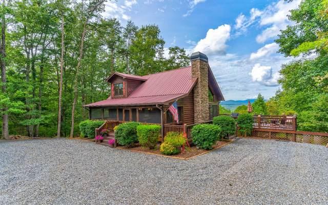 1008 Laurel Ridge Dr, Cherry Log, GA 30522 (MLS #300670) :: Path & Post Real Estate