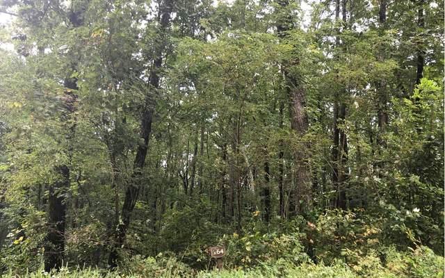0 Trailwood Dr Lot 164, Ellijay, GA 30536 (MLS #300678) :: Path & Post Real Estate