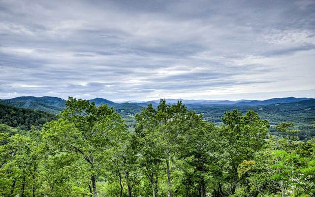 Brasstown, NC 28906 :: RE/MAX Town & Country