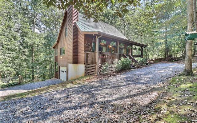 16 Berry Court, Ellijay, GA 30540 (MLS #300765) :: Path & Post Real Estate