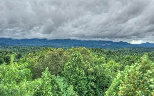 15+AC Bryant Farm Lane, Ellijay, GA 30540 (MLS #300789) :: RE/MAX Town & Country
