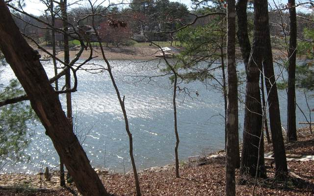 LT 34 Nottely Shores West, Blairsville, GA 30512 (MLS #300859) :: RE/MAX Town & Country