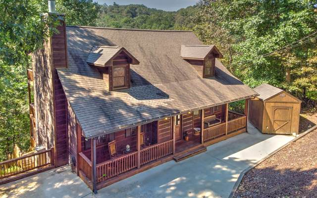 205 Dawn Lane, Ellijay, GA 30540 (MLS #300876) :: Path & Post Real Estate