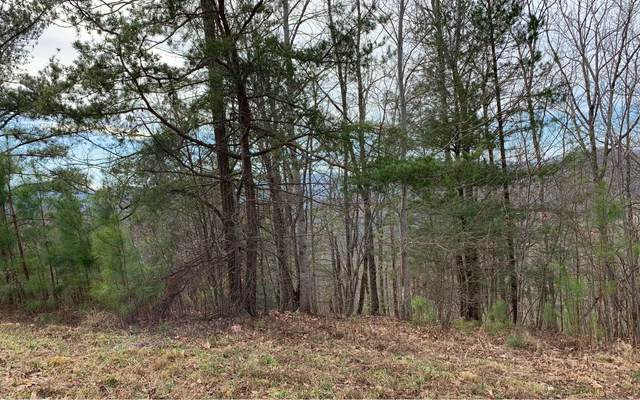 LT111 Summit Way, Blairsville, GA 30512 (MLS #300897) :: RE/MAX Town & Country