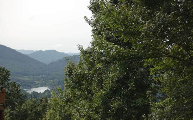 21B Mountain Harbour 21B, Hayesville, NC 28904 (MLS #300905) :: RE/MAX Town & Country