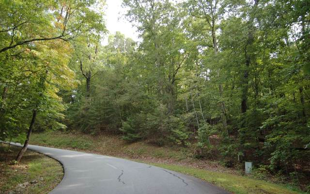 28A Mountain Harbour 28A, Hayesville, NC 28904 (MLS #300910) :: RE/MAX Town & Country