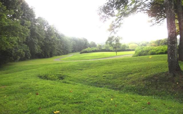 Mckee Creek Lane, Blairsville, GA 30512 (MLS #300948) :: Path & Post Real Estate