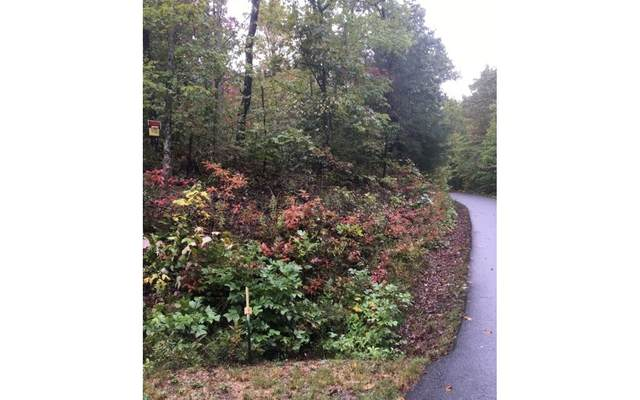 00 Farmers Top Dr, Murphy, NC 28906 (MLS #300977) :: Path & Post Real Estate