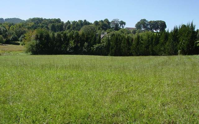LOT 3 Allison Drive, Young Harris, GA 30582 (MLS #301020) :: RE/MAX Town & Country
