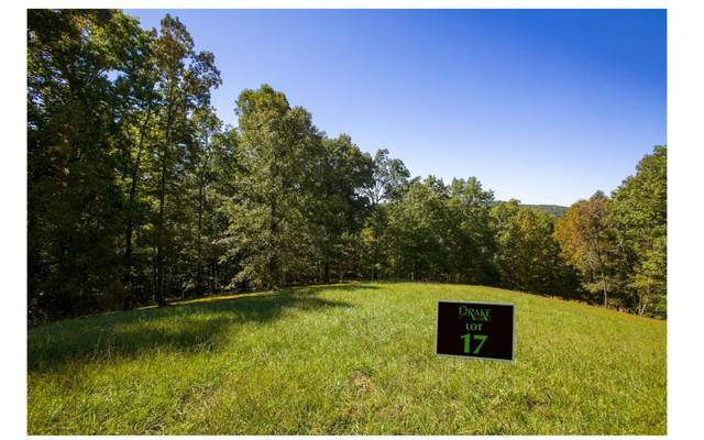 LT17 Drake Ridge Lane, Hayesville, NC 28904 (MLS #301084) :: RE/MAX Town & Country