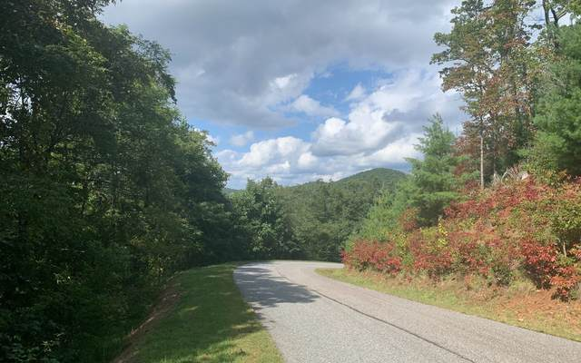 68&69 Chestnut Mountain, Blairsville, GA 30512 (MLS #301124) :: RE/MAX Town & Country