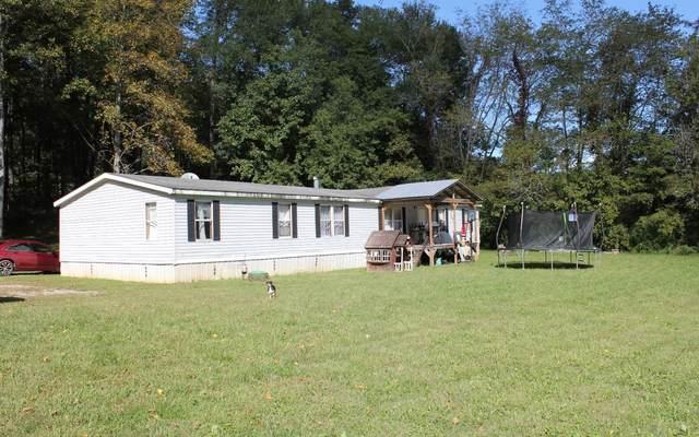 90 Joe Lane, Hayesville, NC 28904 (MLS #301127) :: Path & Post Real Estate