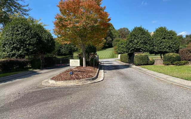 Lot 22 The Arbor, Blairsville, GA 30512 (MLS #301146) :: Path & Post Real Estate